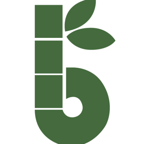 Bambaw zéro déchet écologie